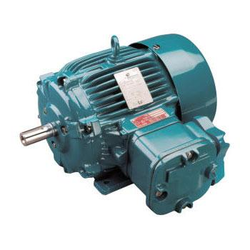 Single phase north shore electrical motor services for Electric motor repair company
